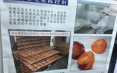 專訪劉董漫談癌症剋星—台灣國寶牛樟芝的功能—
