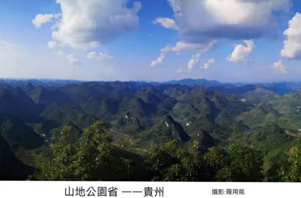 貴州山水甲天下,大力發展林下經濟,養蜂鞏固脫貧成果
